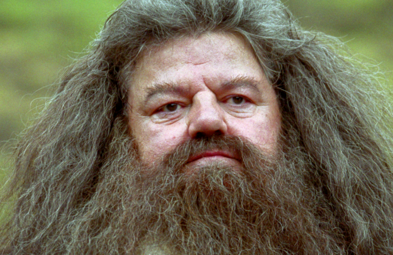 No podrás creer cómo reapareció 'Hagrid' #FOTO
