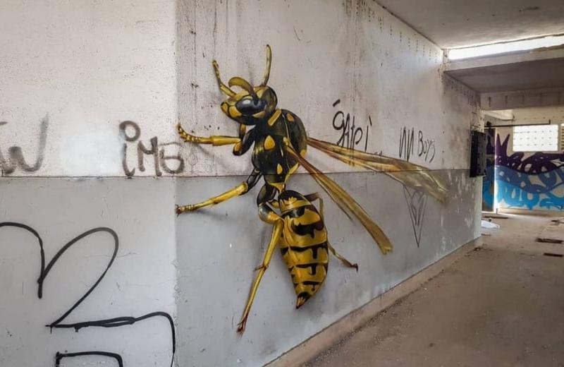 Truco para ver insectos en 3D en tus fotos con la función de Google