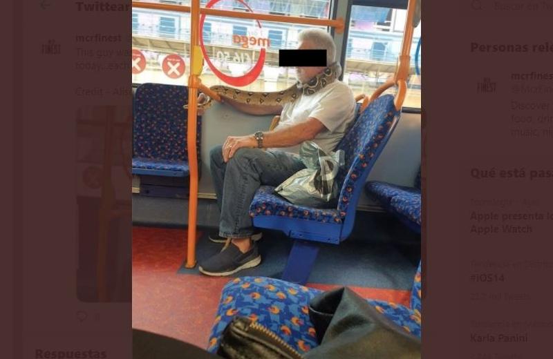 Hombre usa una serpiente como cubrebocas en camión urbano (+fotos)